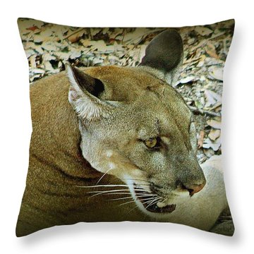Panther Throw Pillow by Debra Forand