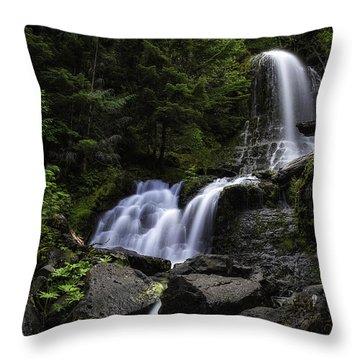 Panther Falls Throw Pillow