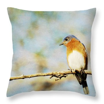 Papa Blue Throw Pillow