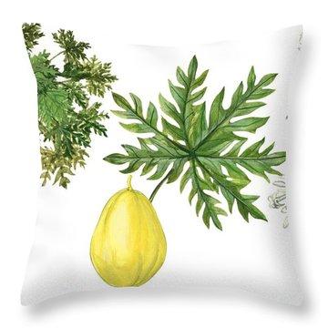 Papaya Throw Pillow by Anonymous