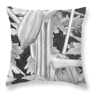 Papaya Throw Pillow by Lew Davis