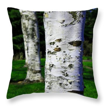 Black And White Throw Pillow featuring the photograph Paper Birch Trees by Aaron Berg