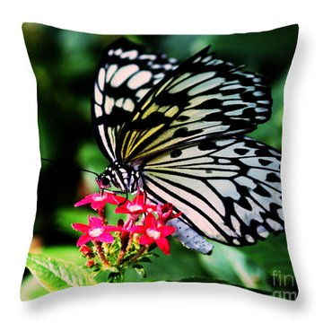 Paper White Butterfly Throw Pillow