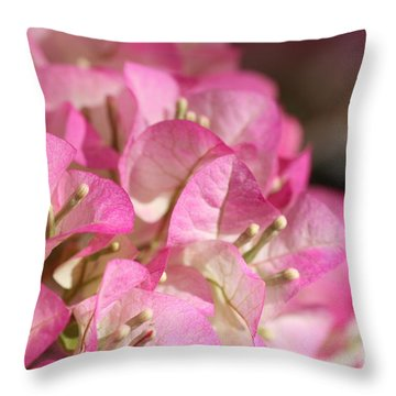 Papery In Pink Throw Pillow by Cathy Dee Janes