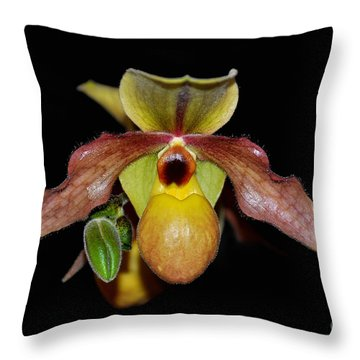Throw Pillow featuring the photograph Paphiopedilum 'summer Ice' Orchid by Susan Wiedmann