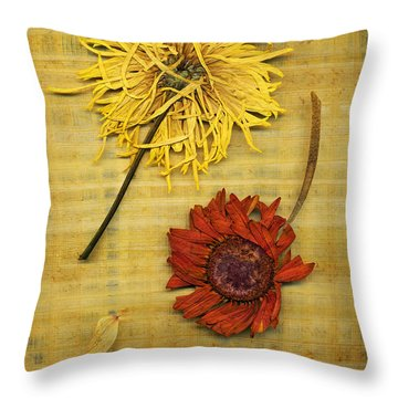 Papyrus 2 Throw Pillow