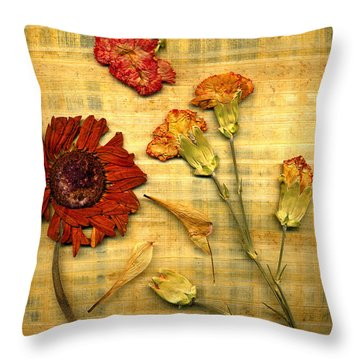 Papyrus1trioa Throw Pillow
