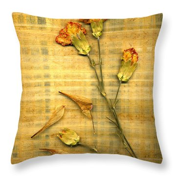 Papyrus2 Throw Pillow