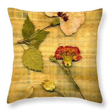 Papyrus4 Throw Pillow