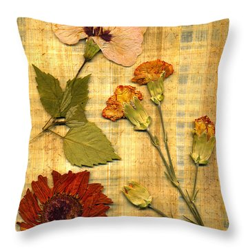 Papyrus5 Throw Pillow