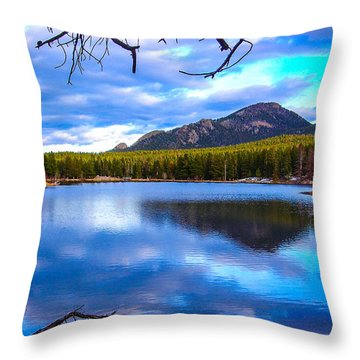 Throw Pillow featuring the photograph Paradise 2 by Shannon Harrington