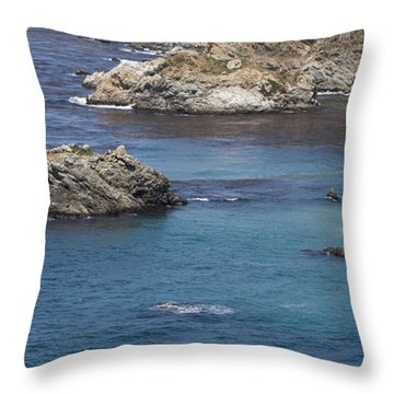 Throw Pillow featuring the photograph Paradise Beach by David Millenheft