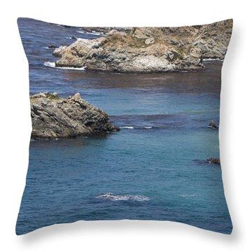 Paradise Beach Throw Pillow