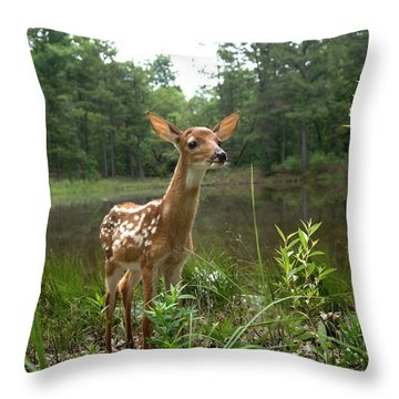 Paradise Found Throw Pillow by Bill Stephens