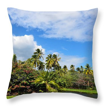Throw Pillow featuring the photograph Paradise Lagoon by David Lawson