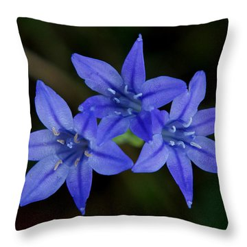 Paradise Lost Throw Pillow by Kim Pate