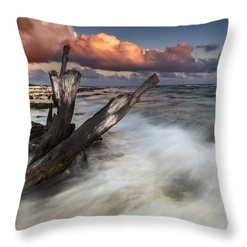 Throw Pillow featuring the photograph Paradise Lost by Mihai Andritoiu