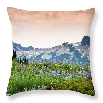 Throw Pillow featuring the photograph Paradise Meadows And The Tatoosh Range by Jeff Goulden