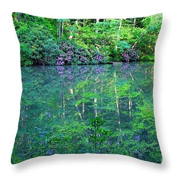 Paradise Throw Pillow by Melissa Petrey