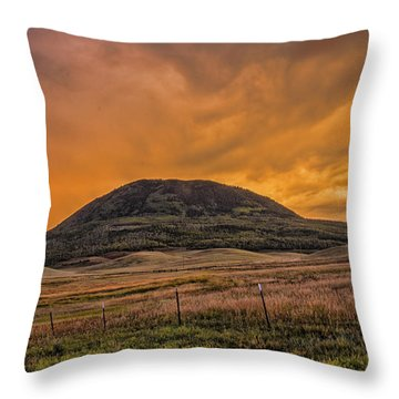 Paradise On Elk Mountain Meadows Throw Pillow by Daniel Hebard