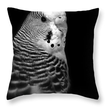 Parakeet Throw Pillow by Nathan Abbott