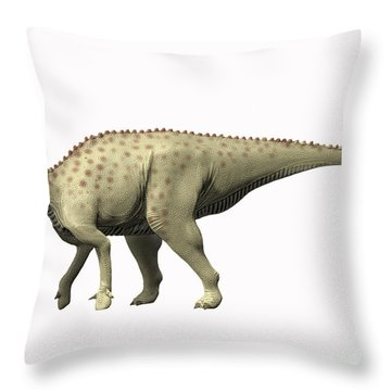 Pararhabdodon Isonensis, Late Throw Pillow by Nobumichi Tamura