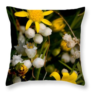 Parasitic Dodder On Broomweed Throw Pillow