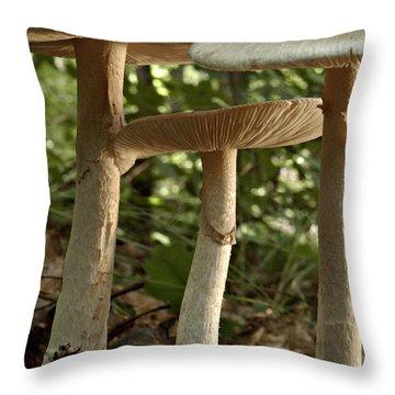 Parasol Mushrooms Macrolepiota Sp Throw Pillow by Susan Leavines
