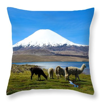 Parinacota Volcano Lake Chungara Chile Throw Pillow by Kurt Van Wagner