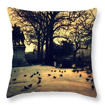 Charlemagne Throw Pillows Fine Art America Magnificent Fairon Decorative Throw Pillow