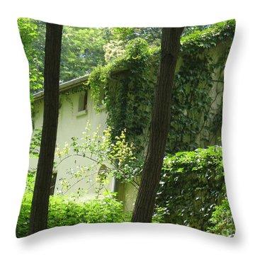 Paris - Green House Throw Pillow