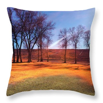 Park In Mcgill Near Ely Nv In The Evening Hours Throw Pillow by Gunter Nezhoda