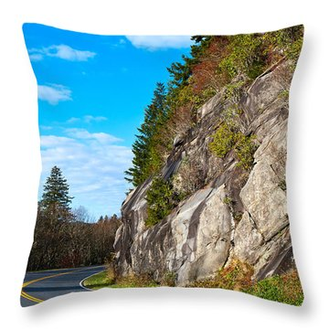 Park Road Throw Pillow by Melinda Fawver