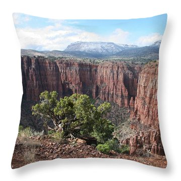 Parker Canyon In The Sierra Ancha Arizona Throw Pillow by Tom Janca