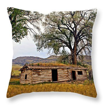 Parker Homestead Throw Pillow by Marty Koch