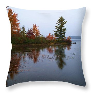 Parker Pond..before The Rain Throw Pillow by Joy Nichols
