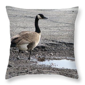 Throw Pillow featuring the photograph Parking Lot Attendant by Michael Krek