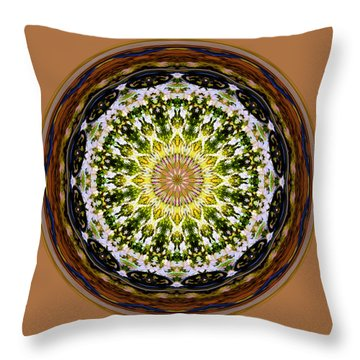 Parkside Mandala Throw Pillow