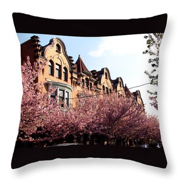 Throw Pillow featuring the photograph Philadelphia Parkside  by Christopher Woods