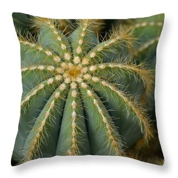 Parodia Magnifica Throw Pillow