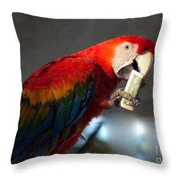 Throw Pillow featuring the photograph Parrot Eating 1 Dollar Bank Note by Gunter Nezhoda