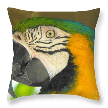 Parrot Throw Pillow by Erick Schmidt