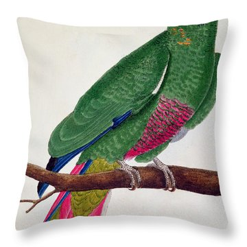 Parrot Throw Pillow by Francois Nicolas Martinet