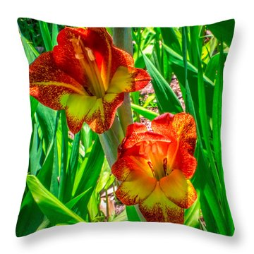 Throw Pillow featuring the photograph Parrot Gladiolus by Rob Sellers