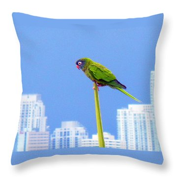 Parrot Throw Pillow by J Anthony