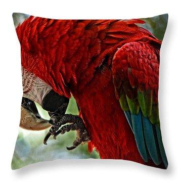 Parrot Preen Hdr Throw Pillow
