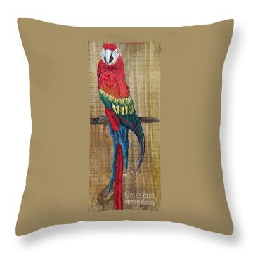Parrot - Scarlet Macaw Throw Pillow by Eloise Schneider