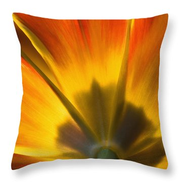 Parrot Tulip - D008405 Throw Pillow by Daniel Dempster