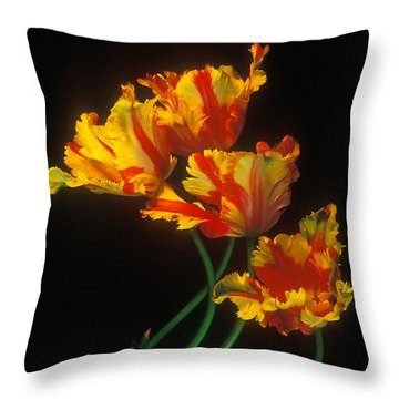 Throw Pillow featuring the photograph Parrot Tulips On Easter Morning Vertical by Arthaven Studios