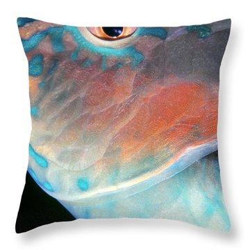 Parrotfish 2 Throw Pillow by Dawn Eshelman